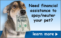 Need financial assistance to spay/neuter your pet?